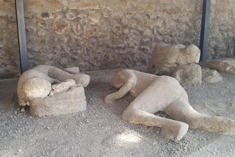 باغ آوارگان؛ قربانیان فسیل شده فوران وزوو