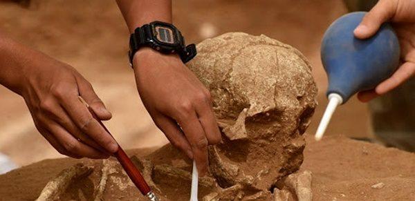 آنالیز در سواحل مکران و خلیج فارس در اولویت پژوهشکده باستان شناسی قرار گرفته است
